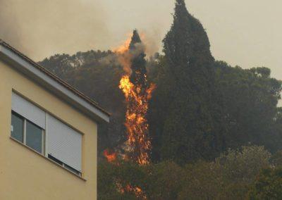 incendio a capena 03