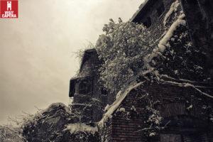 Neve a Capena cesata