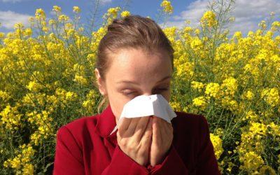 Le allergie stagionali: prevenzione e consigli